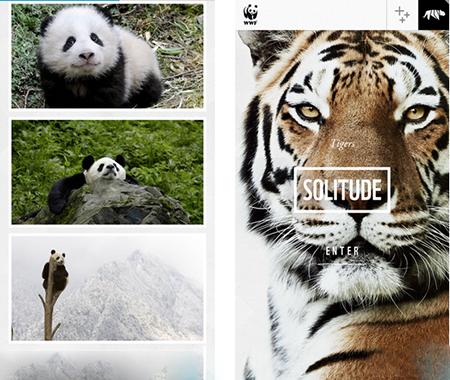 WWF Together测评:人与动物之间的感情