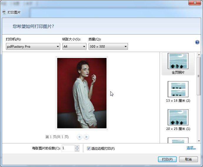 PdfFactory Pro(虚拟打印机)中文版下载 v5.12 - 截图1