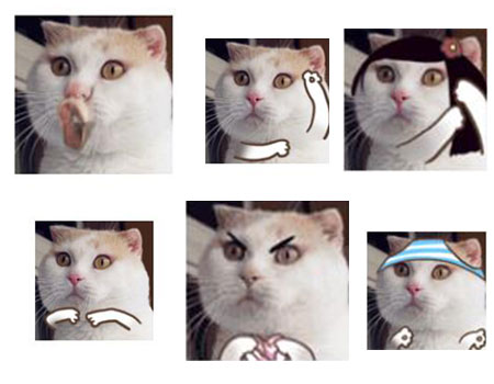 恶搞猫咪QQ表情免费版 - 截图1