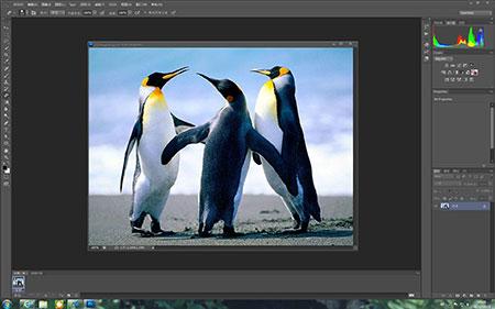 photoshop cs6破解版 - 截图1