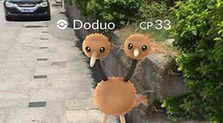 Pokemon go极品精灵进化升级顺序