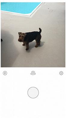 Prisma app使用教程1