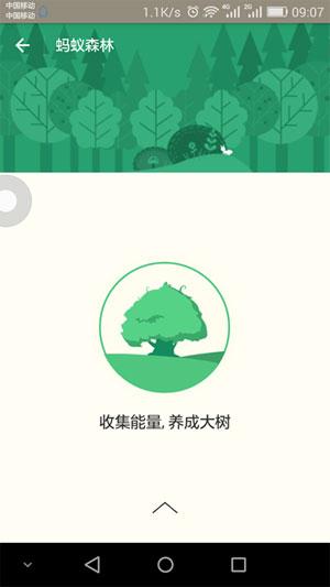 支付宝蚂蚁森林4