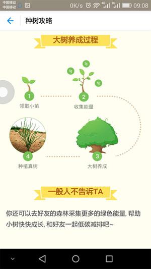 蚂蚁种树攻略4